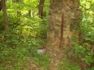 Chimney, Saw and Wash Tub #2 by Furlough in Trail & Blazes in Virginia & West Virginia