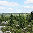 Dolly Sods Ridge Line View by Furlough in Views in Virginia & West Virginia