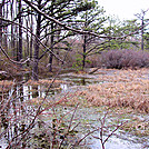 St Mary's Circuit Hike by Furlough in Views in Virginia & West Virginia
