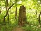Chimney, Saw and Wash Tub off of Hannahs Run Trail by Furlough in Trail & Blazes in Virginia & West Virginia