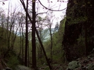 The Trail Down Little Devils Staircase  5-1-09 by Furlough in Views in Virginia & West Virginia