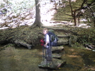 Springer To Neels Gap Hike by NightStick in Section Hikers