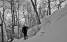 Too Many Drifts! by Deerleg in Trail & Blazes in Maryland & Pennsylvania