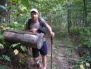 Shenandoah 900 Miles Down by Deerleg in Trail & Blazes in Virginia & West Virginia