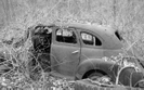 Old Chevy by Deerleg in Trail & Blazes in Maryland & Pennsylvania