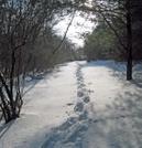 Swatara Gap Feb 27th 2010 by Deerleg in Trail & Blazes in Maryland & Pennsylvania