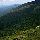 Gulf of Slides from Boott Spur Trail by Driver8 in Views in New Hampshire