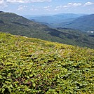 Mahoosucs and Maine from Boott Spur Trail by Driver8 in Views in New Hampshire