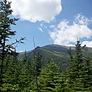Lion Head and Mt. Washington from Boott Spur Trail Just Below Alpine Zone by Driver8 in Views in New Hampshire