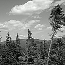 Carter Range from Lower Boott Spur Trail Viewpoint by Driver8 in Views in New Hampshire