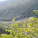 Slide-Scarred North Wall and Base of Ammo Ravine from Trail Above by Driver8 in Views in New Hampshire