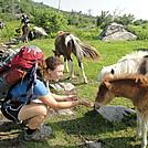 dsc00958 by stonedflea in Thru - Hikers