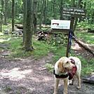 2011 AT thru-hiker by MotherShip in Thru - Hikers