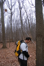 Raven Rock Shelter, Md by english in Maryland & Pennsylvania Shelters