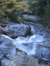 Beaver Brook Trail, Mt Moosilauke by SavageLlama in Trail & Blazes in New Hampshire