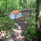 Camping on Springer Mtn by Cotton Terry in Tent camping