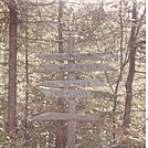 """1983-Vermont-""""Burma Shave Signs"""" by cwardle in Sign Gallery"""