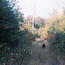 Dobersam hiking 1985 by cwardle in Thru - Hikers