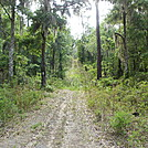 Little Manatee River - Southfork Tract by Sickmont in Other Trails