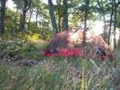 Hog Camp Gap To Rusty's (love, Va) by Diatribe in Trail & Blazes in Virginia & West Virginia