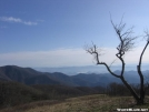 View from Siler Bald, NC