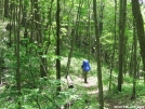 Hiking on the AT in the Stecoahs by hiker33 in Views in North Carolina & Tennessee
