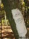 Smiley Blaze by hiker33 in Trail & Blazes in North Carolina & Tennessee
