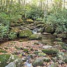 SW Virginia