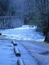 Abrams Falls Hike by DVNDSN in Members gallery