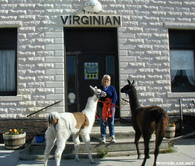 The Virginian Hotel
