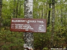 New Blueberry Ledges Trail by TJ aka Teej in Trail & Blazes in Maine