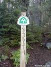 North! by TJ aka Teej in Trail & Blazes in Maine