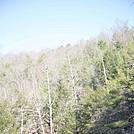 Central VA Jennings Creek-Catawba