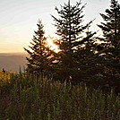 North Adams, MA South to Greylock Hike 8/2013 by goody5534 in Views in Massachusetts