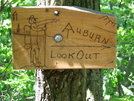Auburn Overlook Sign by dperry in Sign Gallery