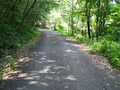 Bartram Trail by dperry in Trail & Blazes in Maryland & Pennsylvania