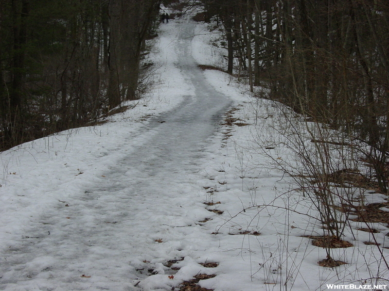 Icy Trail, Delaware Water Gap