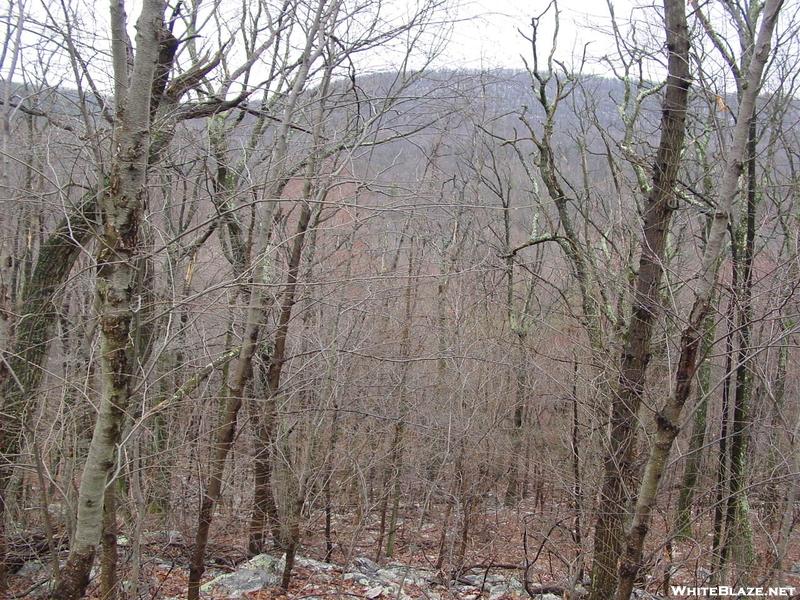 Cumberland Valley Road Walk