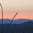 Cheowah Sunrise by Aram in Thru - Hikers
