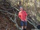Blowdown going up Walnut Mtn by grrickar in Views in North Carolina & Tennessee