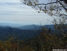 View coming down into Newfound Gap