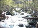 Proverbial Freshet On Mill Creek by k.reynolds70 in Trail & Blazes in Virginia & West Virginia