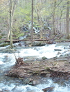 Mill Creek by k.reynolds70 in Trail & Blazes in Virginia & West Virginia