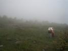 Soupy Highlands by k.reynolds70 in Other