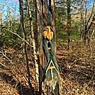 Gooch Gap Georgia Trail Art