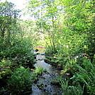 Upper Goose feeder stream on AT by lemon b in Trail and Blazes in Massachusetts