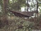 stealth hammock camping