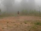 Fog by StreamWalker in Members gallery