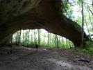 Buffalo Arch