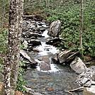 Alum BVluff Trail